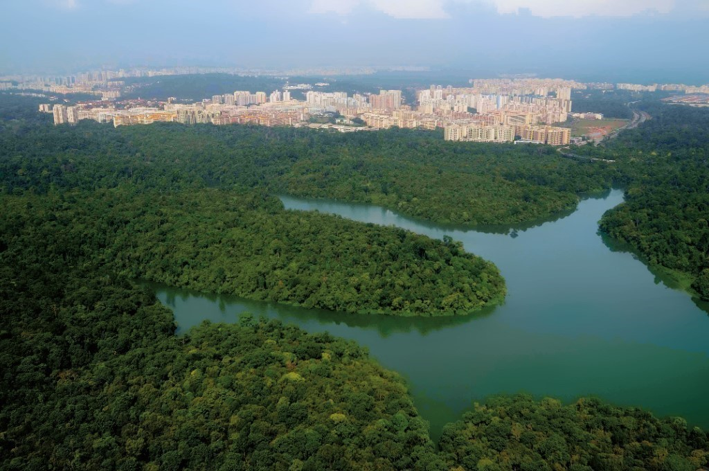 An aerial view of the Central Catchment Nature Reserve and the surrounding residential areas. (PHOTO: Nparks)